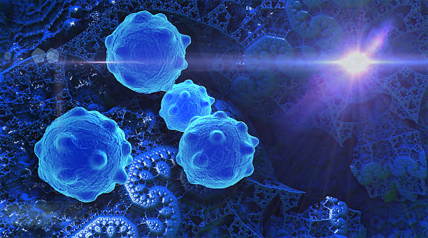 Royalty Free Cancer Cell Pictures Images And Stock Photos