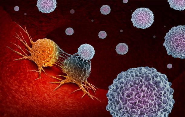 krebsimmuntherapie - krebs tumor stock-fotos und bilder