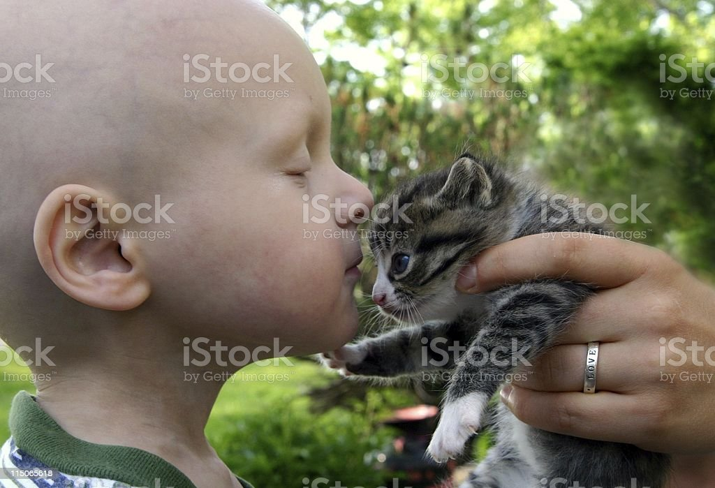 Cancer Kids; kisses for kitten stock photo