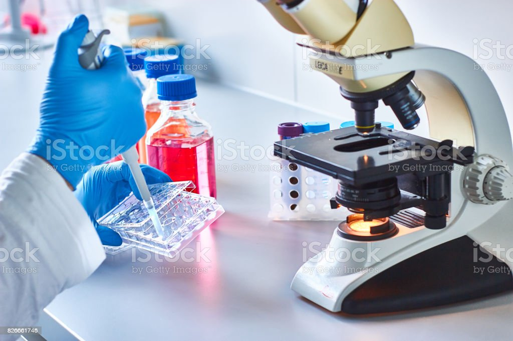 Cancer research stock photo