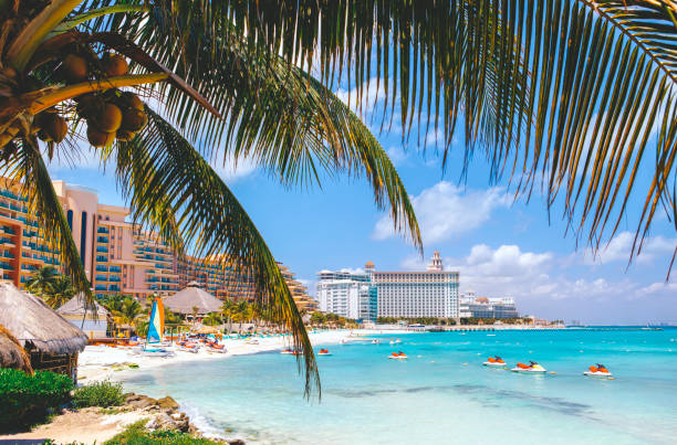Cancun beach with hotels and plam tree in foreground stock photo