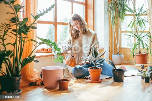 Young woman watering her houseplants. She's sitting on the floor with flower pots around her.