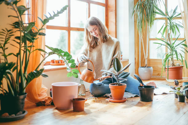 Candid portrait of woman watering her plants. stock photo