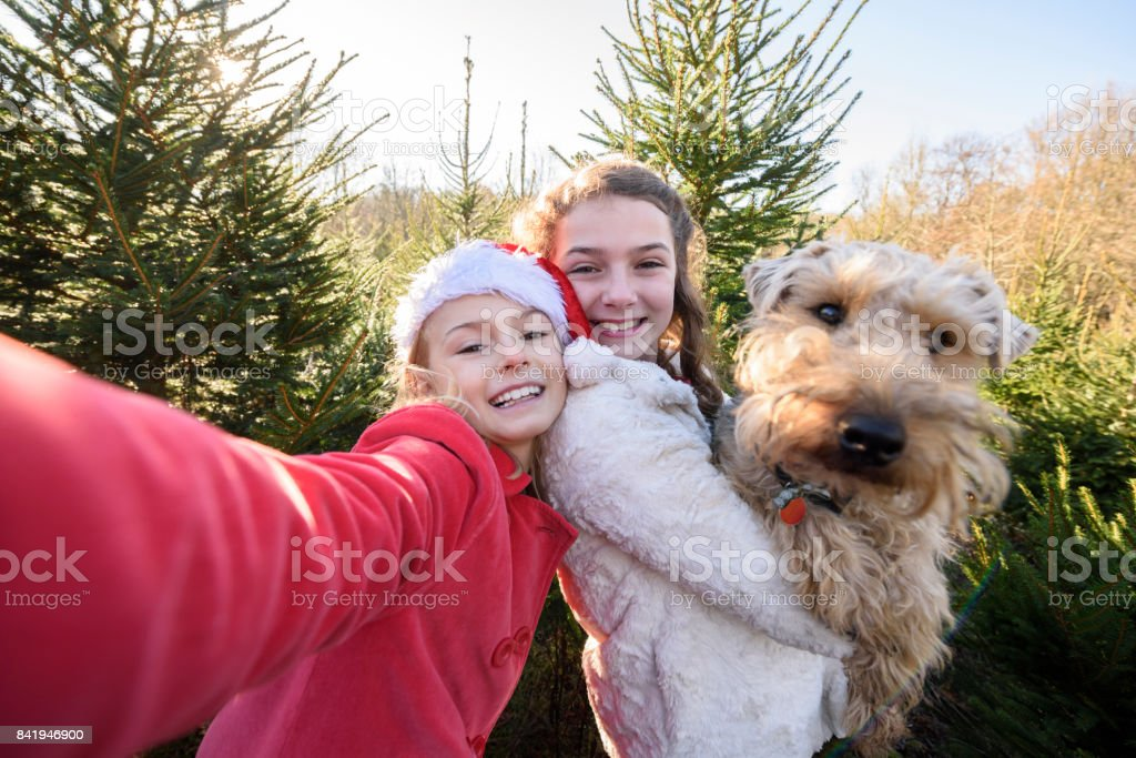 Candid selfie of girl in santa hat with her sister holding a dog stock photo