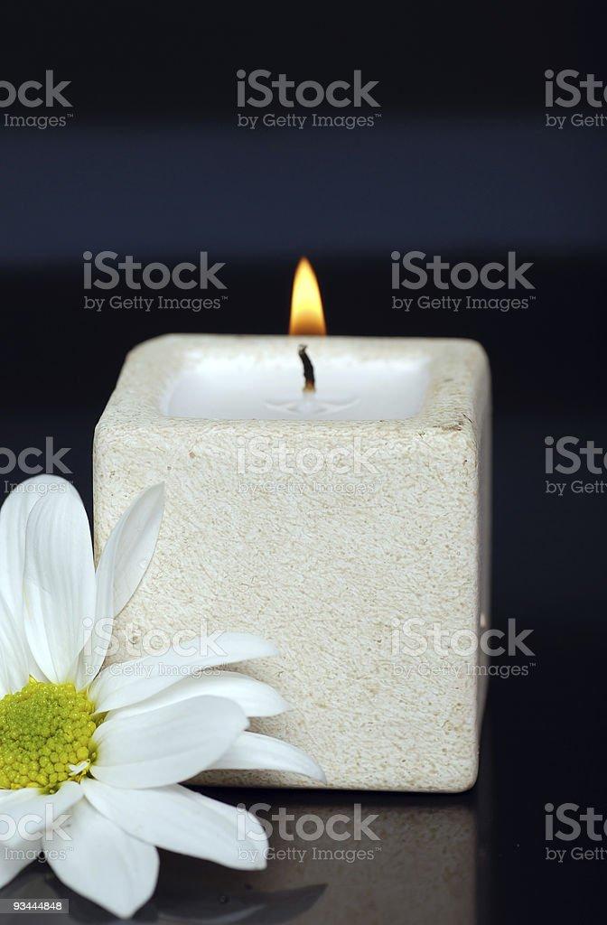 Kerzen und Gänseblümchen auf Schwarz Lizenzfreies stock-foto