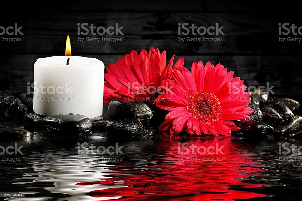 Velas y flores foto de stock libre de derechos