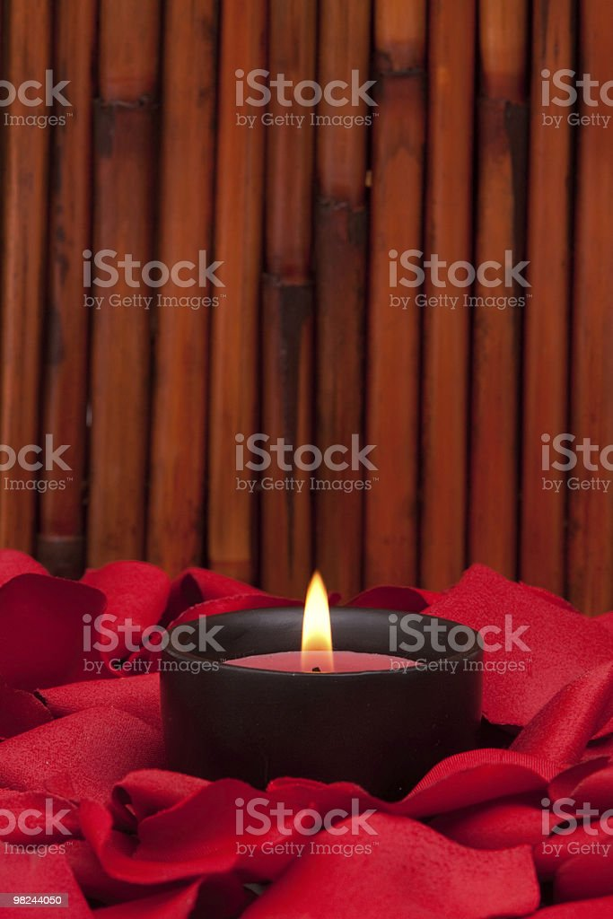 Candle and red rose petals royalty-free stock photo