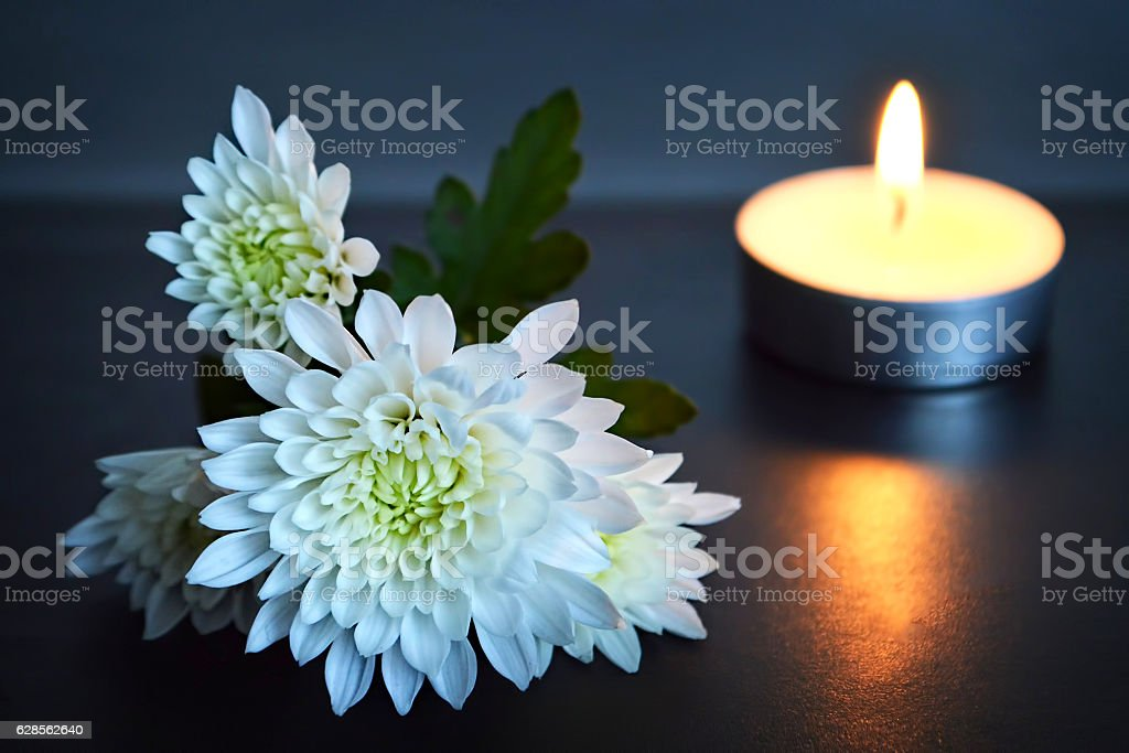 Candle and white flowers stock photo