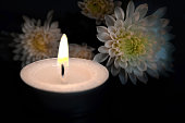 Candle and white Chrysanthemum flowers