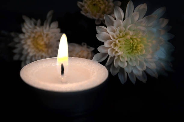 candle and white flowers - death stock pictures, royalty-free photos & images