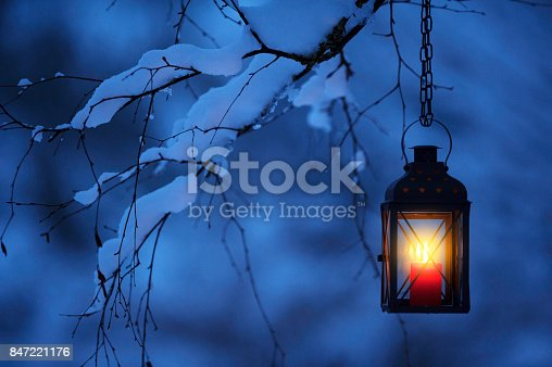 Candle lantern hanging from tree branch