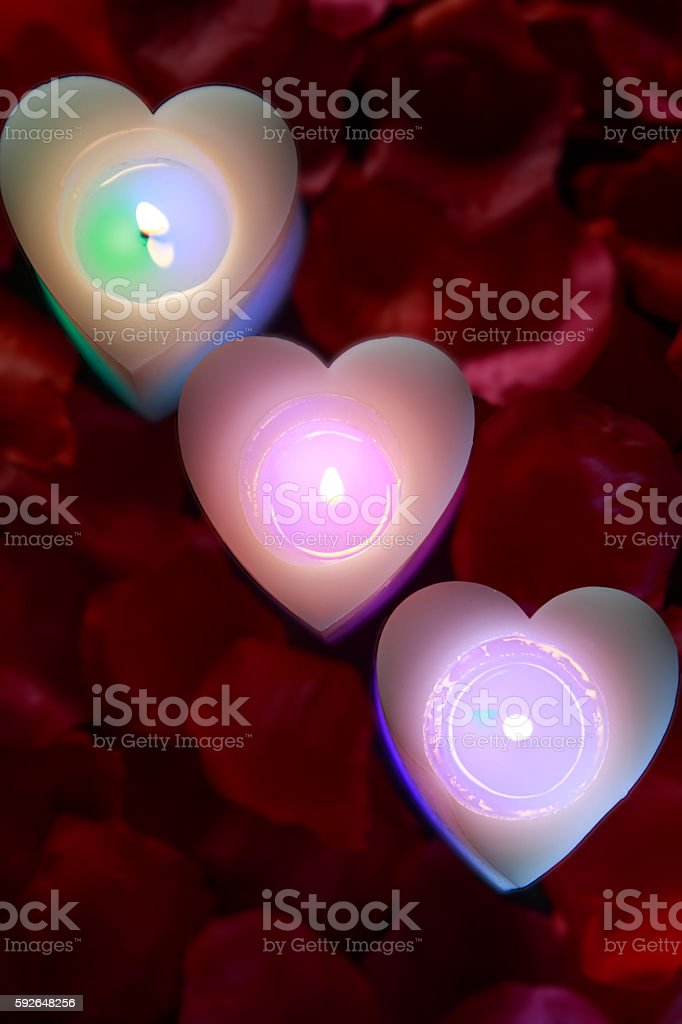 candlelight and petal – zdjęcie