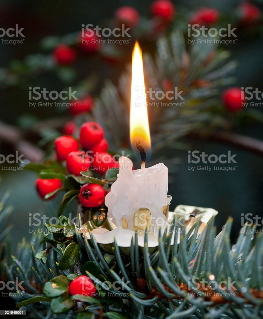 Candlelight on the tree stock photo