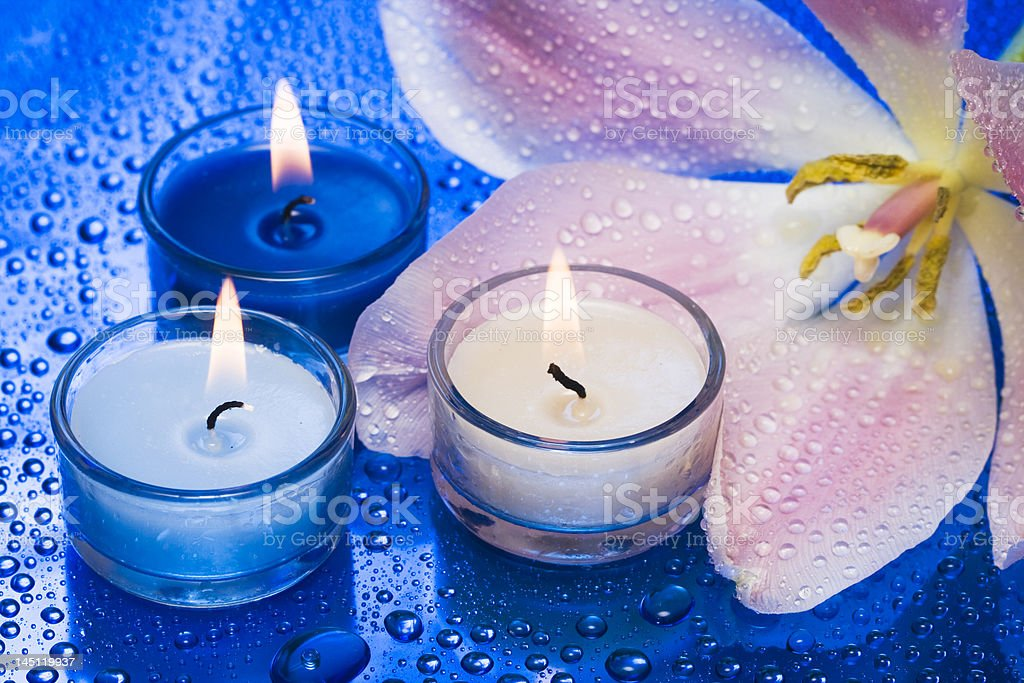 Candles with flower on blue background royalty-free stock photo