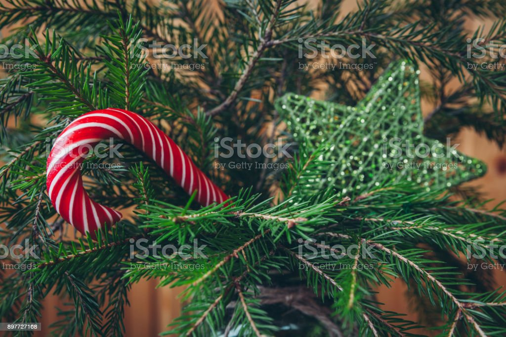 Candy Cane on a Christmas tree stock photo
