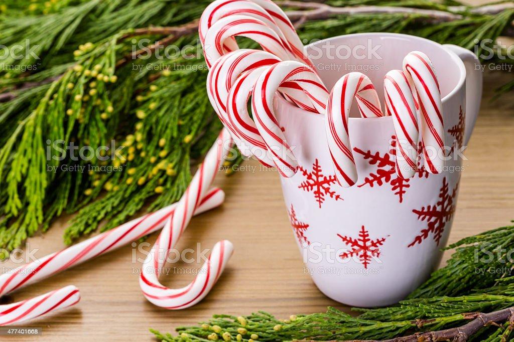 Candycanes stock photo