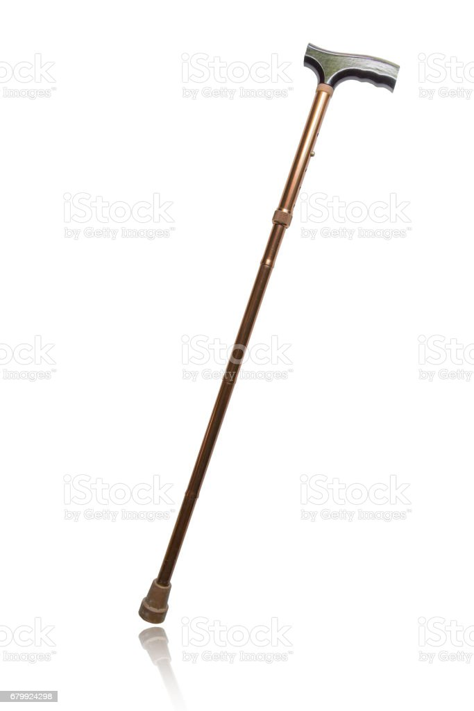 Cane isolated on white background - foto de stock
