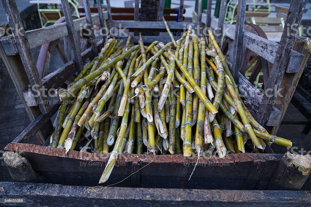 cane sugar on a dare for further processing stock photo