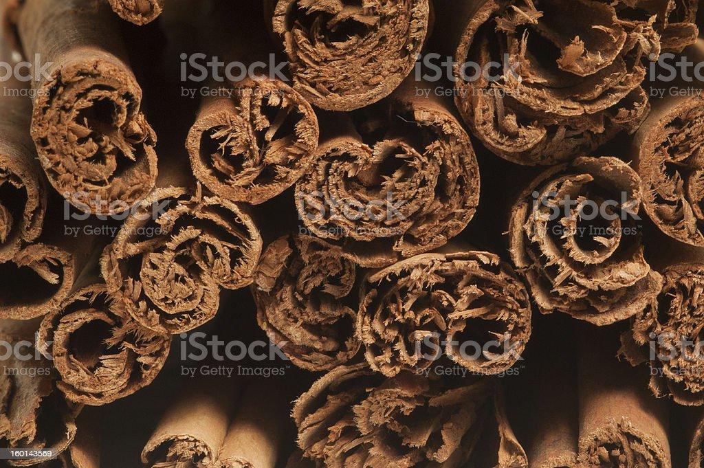 Canela, Cinnamon Sticks stock photo