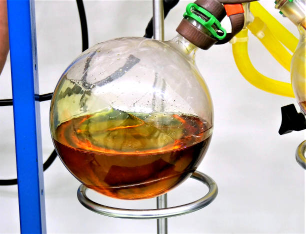 cannabinoid marijuana cannabis oil extraction in lab cannabinoid marijuana cannabis oil extraction in lab, image tincture stock pictures, royalty-free photos & images