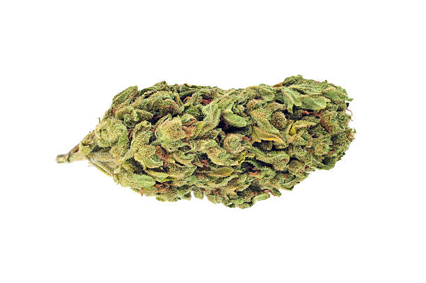 Cannabis bud isolated on white picture id595361878?b=1&k=6&m=595361878&s=612x612&w=0&h=vpa7mvfiw5yvqnflnjdvmvvzr6buqqft3zsxvs9ynhu=