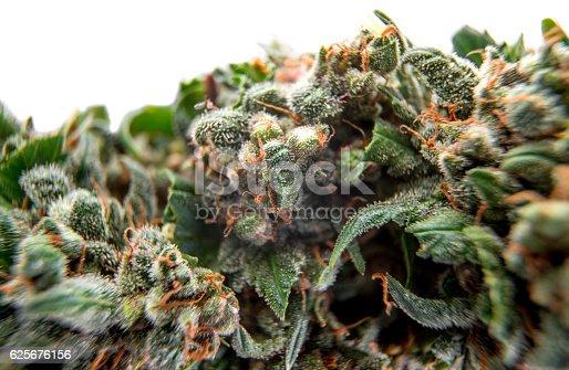 istock cannabis buds background 625676156