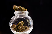 Cannabis buds (sour tangie strain) on glass jar isolated on Black