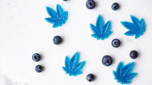 Cannabis CBD infused blueberry edibles Cannabis leaf gummy candy infused with CBD in blueberry flavour thc stock pictures, royalty-free photos & images