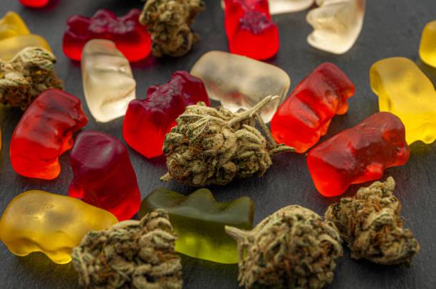 Comestibles de cannabis, marihuana medicinal, gomitas infundidas en CBD y tema conceptual de maceta comestible con de cerca sobre coloridos osos gomosos y cogollos de hierba sobre fondo oscuro - foto de stock