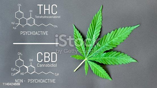 istock CBD THC Cannabis Formula. Structural model of cannabidiol and tetrahydrocannabinol molecule. Medicinal hemp CBD oil. Medical marijuana, despancery business, cannabinoids and health 1140424559