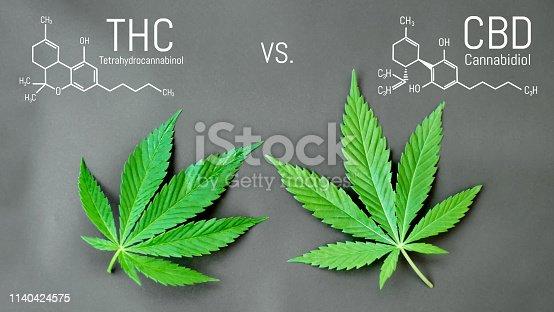 istock CBD THC Cannabis Formula. Structural model of cannabidiol and tetrahydrocannabinol molecule. Medicinal hemp CBD oil. Medical marijuana, despancery business, cannabinoids and health 1140424575