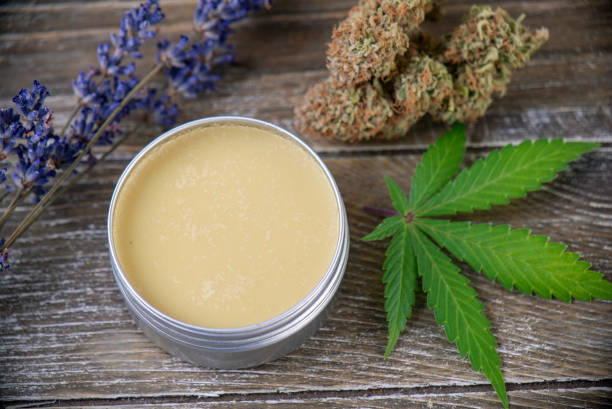 Cannabis hemp cream with marijuana leaf, lavender and nugs stock photo