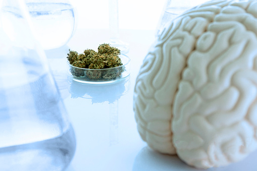 Cannabis Influence On Human Brain Stock Photo - Download Image Now
