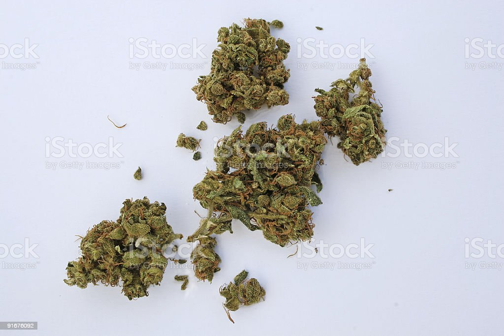 Cannabis - isolated royalty-free stock photo