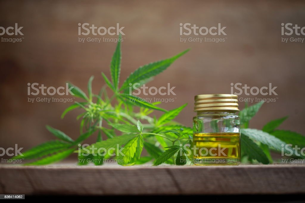 A cannabis leaf and a bottle of hemp oil on a wooden table stock photo