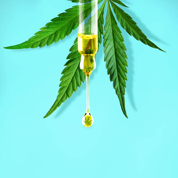 Cannabis leaf and a dropper with drop of CBD OIL close-up on blue background. Macro. Minimal concept Cannabis leaf and a dropper with drop of CBD OIL close-up on blue background. Macro. Minimal concept tincture stock pictures, royalty-free photos & images