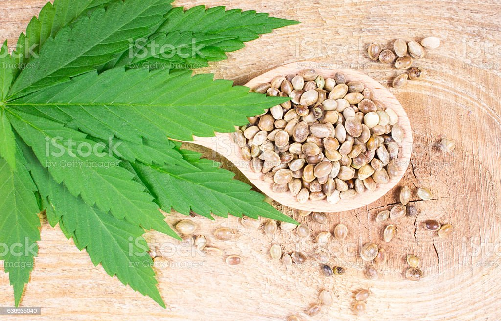 Cannabis leaf and seeds on wooden table. Close Up. stock photo