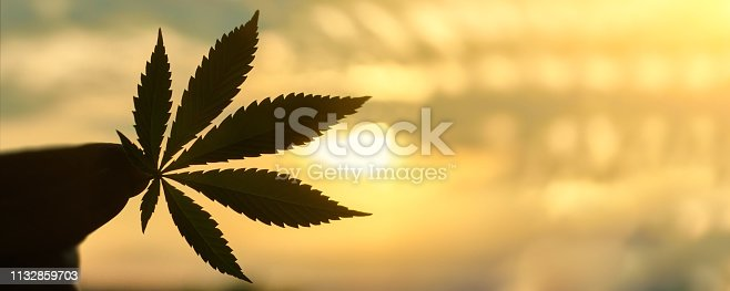 istock CBD Cannabis leaf close-up on background of setting sun with rays of light. Copy space. Thematic photos of hemp and ganja. Background image 1132859703