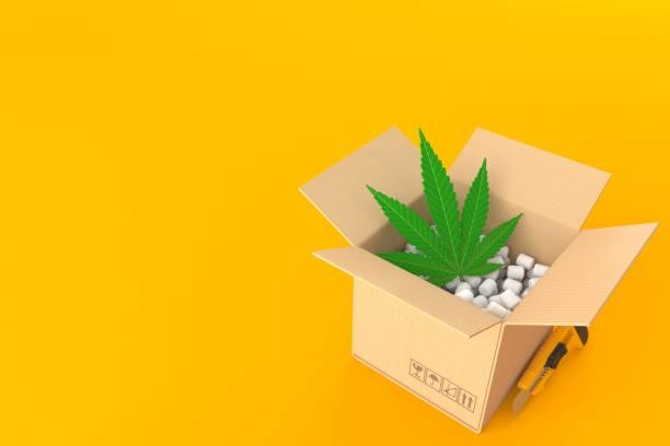 Cannabisblatt im Paket – Foto