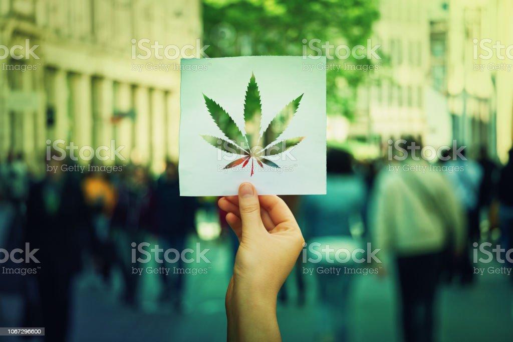 Cannabis-Legalisierung – Foto