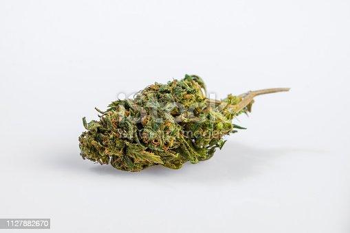 Marijuana - Herbe de cannabis. Sur fond lustré blanc, prise de vue en studio.