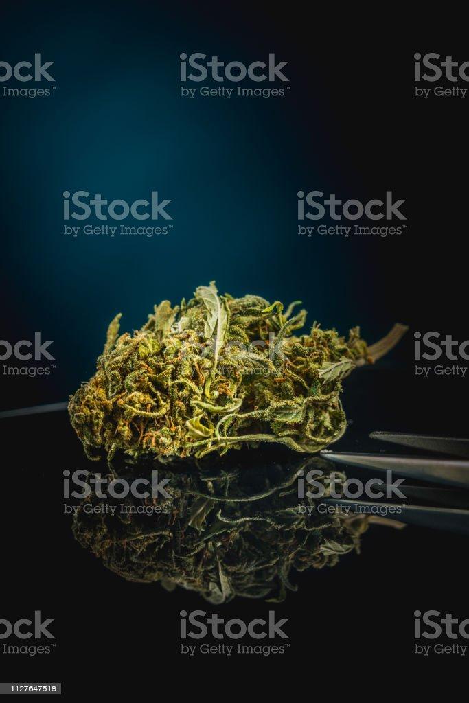 Cannabis, Marijuana, fond noir - Photo