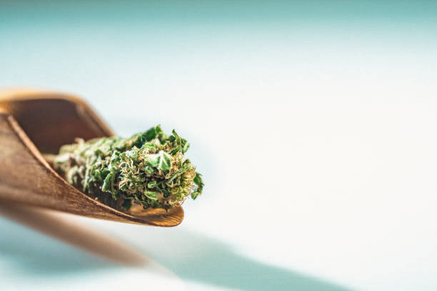 Cannabis marijuana picture id1127577638?b=1&k=6&m=1127577638&s=612x612&w=0&h=cflhdiqaoq8x5i7 8goqmi1uhnot3amqiu5tetz0ije=