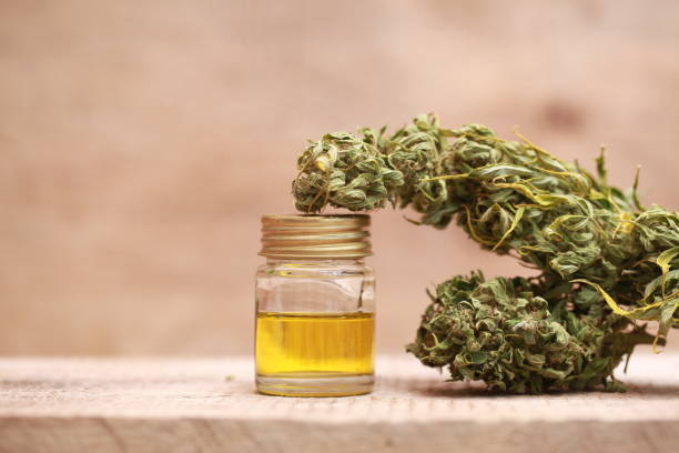 cannabis medical and oil extract stock photo