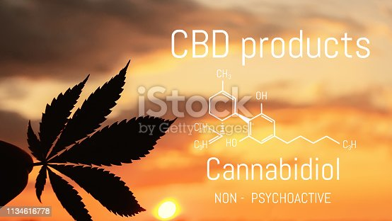 istock CBD Cannabis product. Medical Marijuana and Cannabidiol CBD chemical formula. Thematic photos of growing hemp and ganja. Background image 1134616778