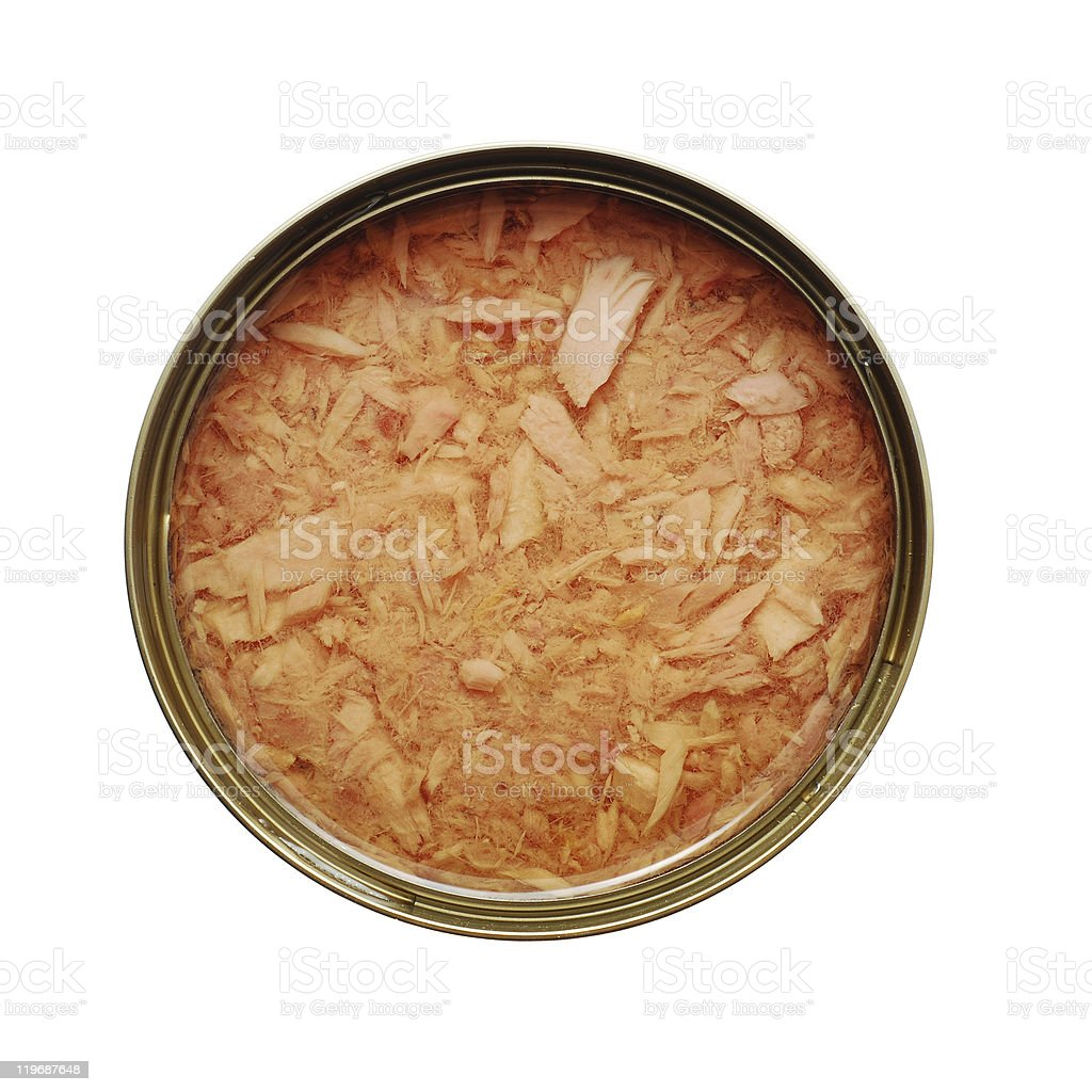 canned fish royalty-free stock photo