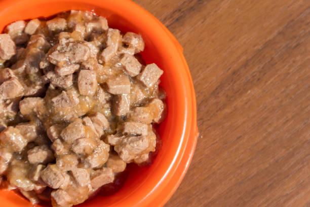 canned food for cats or dogs in a orange plastic bowl - lata comida gato imagens e fotografias de stock