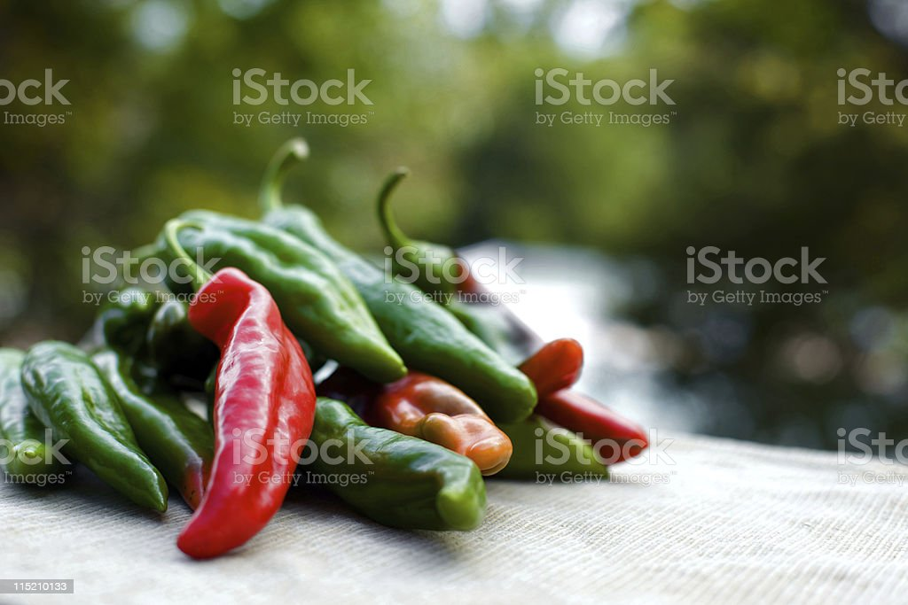 canned mexican anaheim peppers stock photo