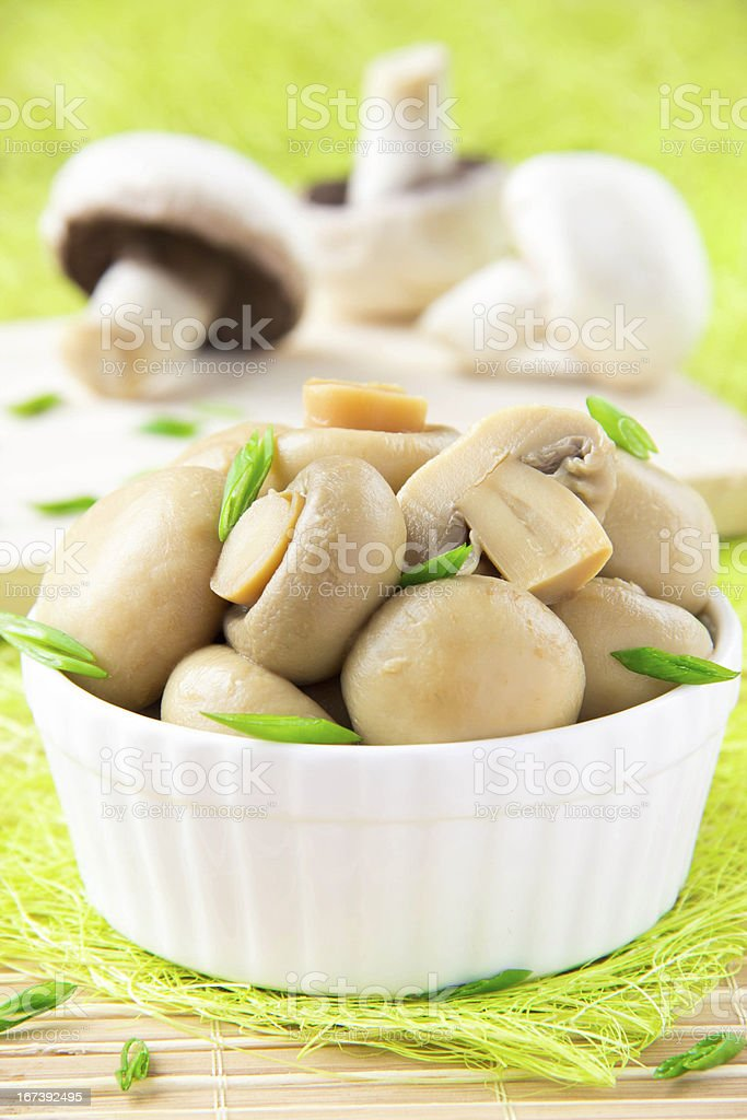Canned mushrooms in a white ceramic bowl royalty-free stock photo