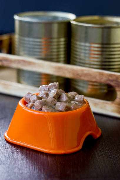 Canned pet food in a orange plastic bowl. stock photo